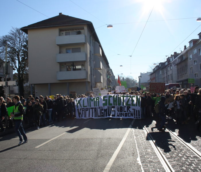 Demonstration gegen den Klimawandel in Darmstadt